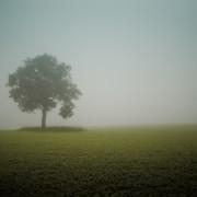Loneliness Not Solitude