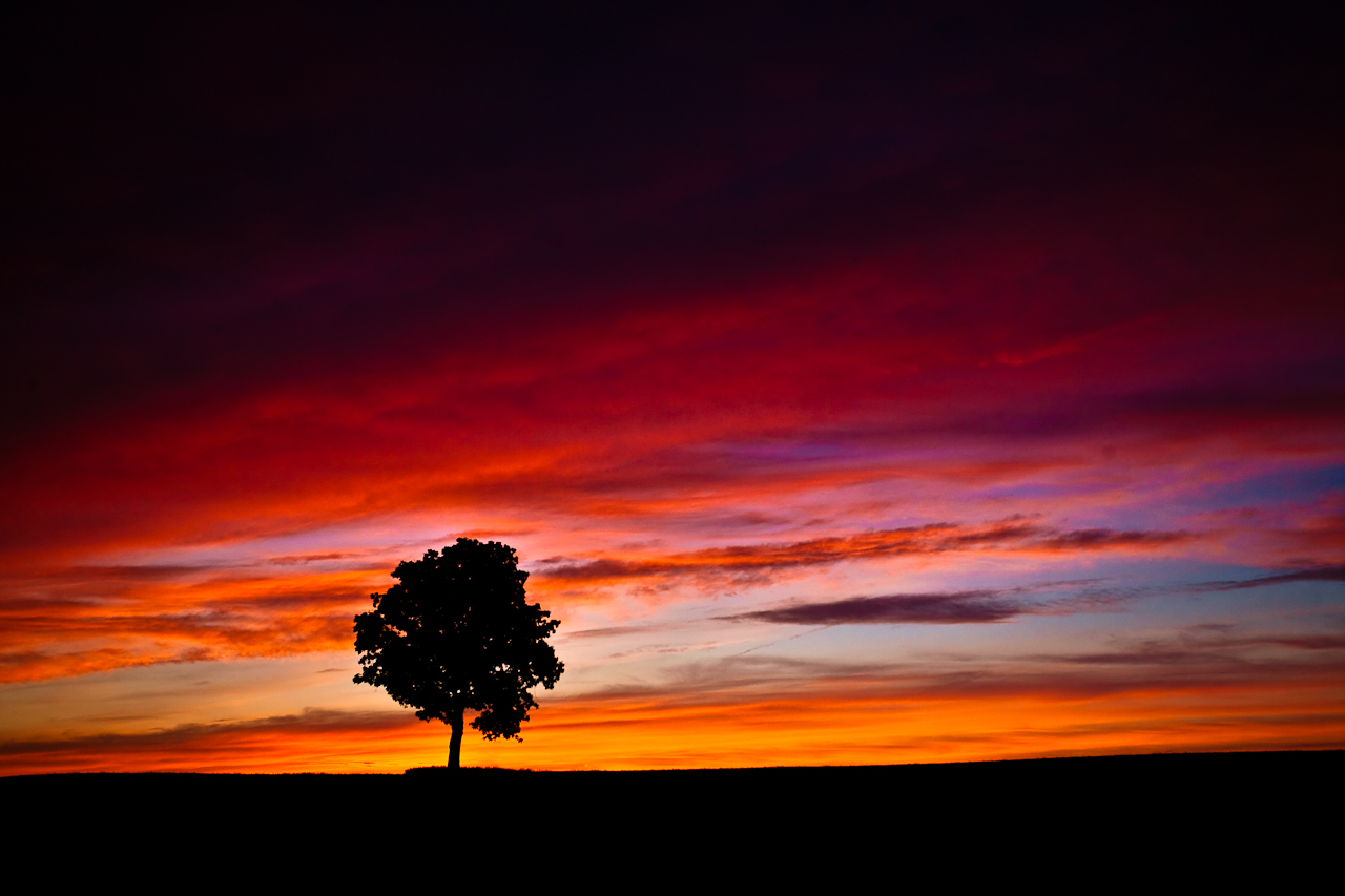 Days-Last-Colors