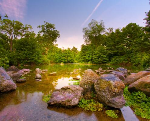 still-lagoon