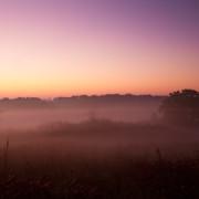 illuminating-the-fog-3