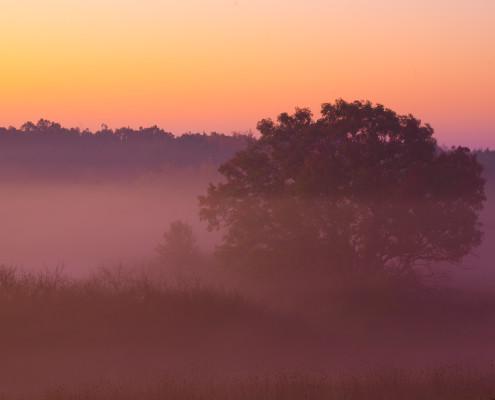 Hushed-October-Morning
