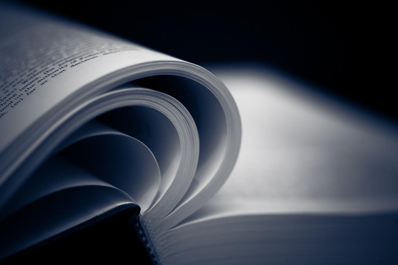 19-365 - Literature