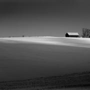 56-365 - Black & White